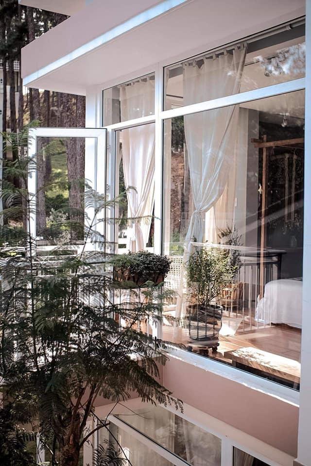 Rời Sài Gòn, vợ chồng trẻ lên Đà Lạt xây nhà đẹp mê li giữa vườn thông - Ảnh 9.