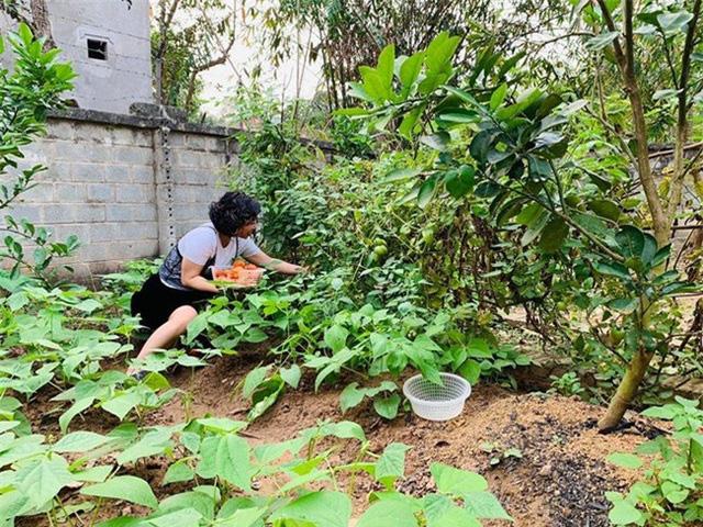 Sân vườn trong biệt thự bạc tỷ của 3 nam diễn viên nổi tiếng nhất nhì showbiz Việt, ai nhìn cũng phải ngưỡng mộ - Ảnh 14.