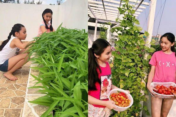 Sân vườn trong biệt thự bạc tỷ của 3 nam diễn viên nổi tiếng nhất nhì showbiz Việt, ai nhìn cũng phải ngưỡng mộ - Ảnh 25.