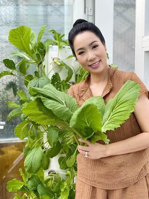 Vườn rau ăn không xuể trong biệt thự 200m2 của Á hậu Trịnh Kim Chi, ngạc nhiên nhất là chi phí đầu tư chỉ... 3 triệu đồng - Ảnh 5.