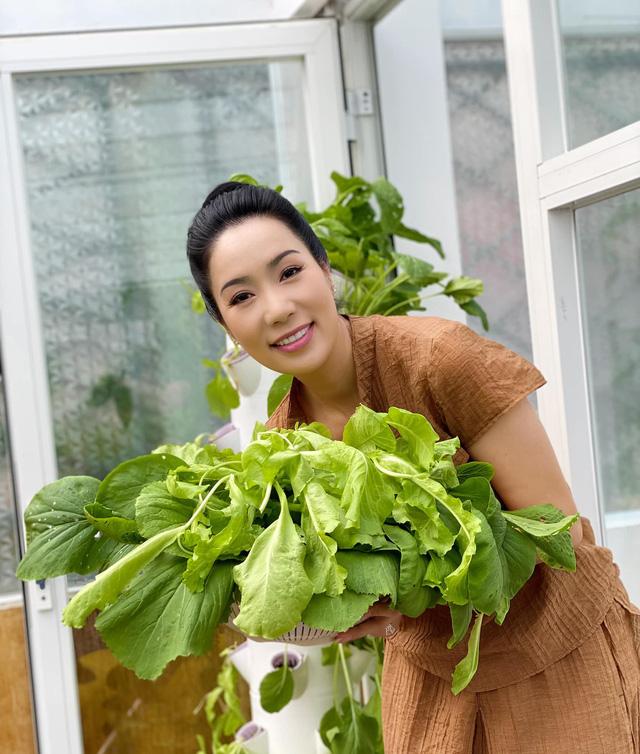 Vườn rau ăn không xuể trong biệt thự 200m2 của Á hậu Trịnh Kim Chi, ngạc nhiên nhất là chi phí đầu tư chỉ... 3 triệu đồng - Ảnh 4.