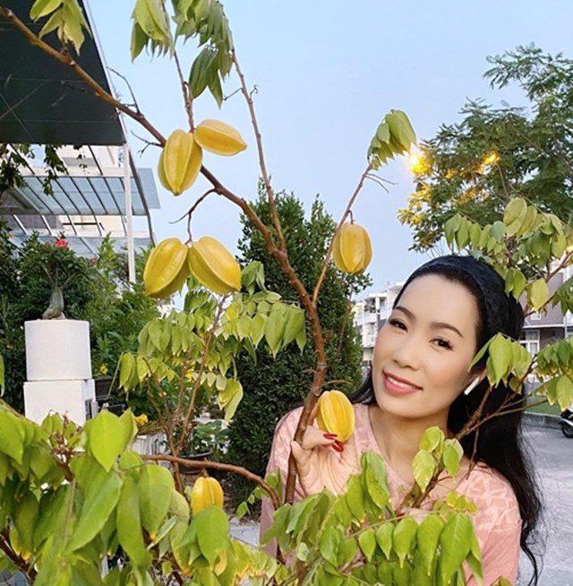 Vườn rau ăn không xuể trong biệt thự 200m2 của Á hậu Trịnh Kim Chi, ngạc nhiên nhất là chi phí đầu tư chỉ... 3 triệu đồng - Ảnh 9.