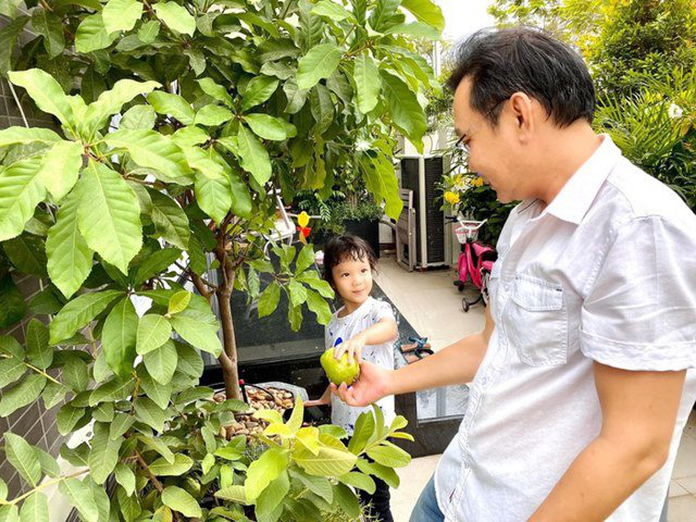 Vườn rau ăn không xuể trong biệt thự 200m2 của Á hậu Trịnh Kim Chi, ngạc nhiên nhất là chi phí đầu tư chỉ... 3 triệu đồng - Ảnh 11.