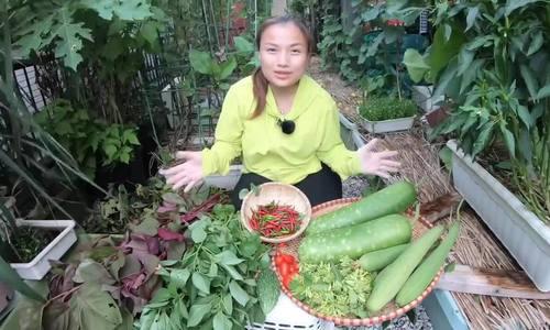 Vườn rau mùa thu của hot vlogger Quỳnh Trần JP - Ảnh 1.