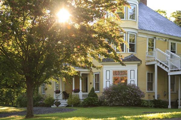 Màu sơn nhà ngoài trời đẹp mê ly, cả nghìn người nhìn đều khen ngợi, đúng đẳng cấp sành điệu - Ảnh 10.