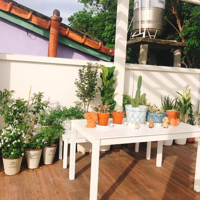 Biệt thự nhà vườn ngập tràn các loại hoa của gia đình ở Bình Dương - Ảnh 6.