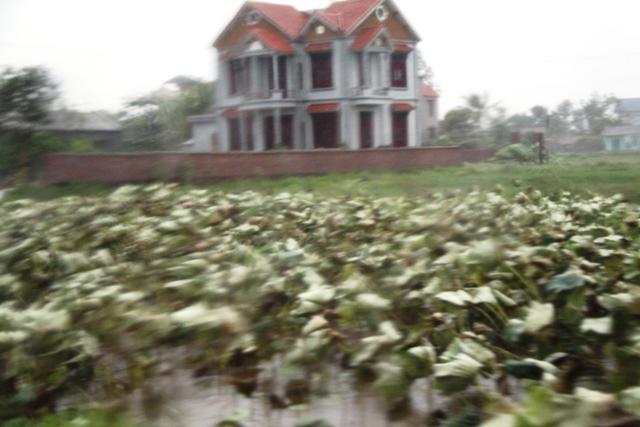 Cận cảnh bão số 5 đổ bộ vào Quảng Ninh 1