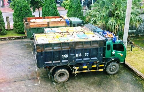 Quảng Ninh: Liên tiếp bắt các vụ buôn lậu hang hóa, vận chuyển gia cầm 1
