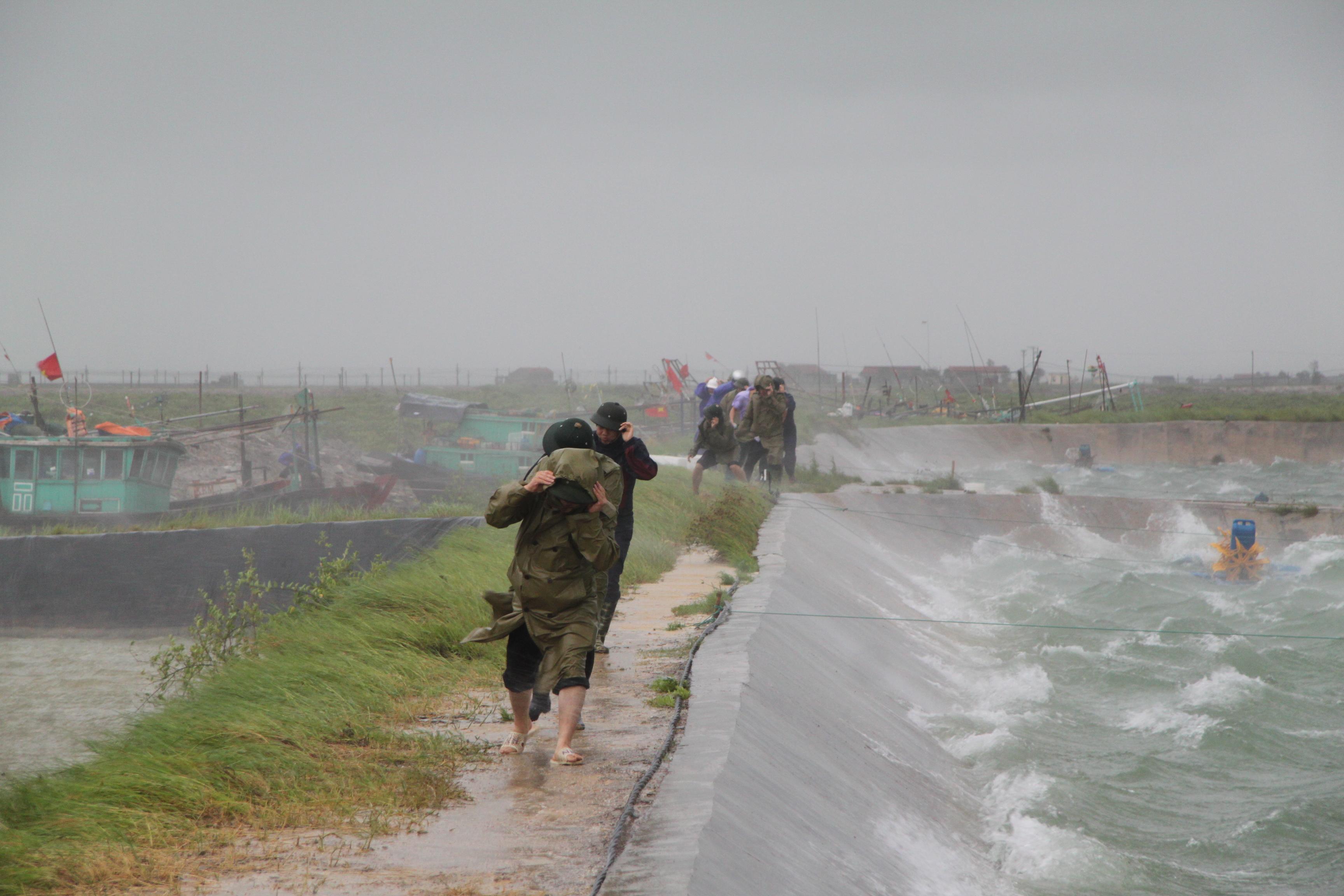 Cận cảnh bão số 5 đổ bộ vào Quảng Ninh 3