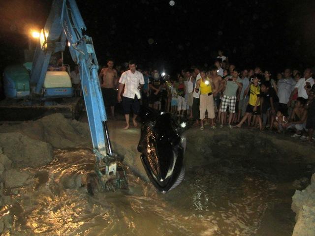 Thức trắng đêm giải cứu cá voi mắc cạn tại đảo Cô Tô 3