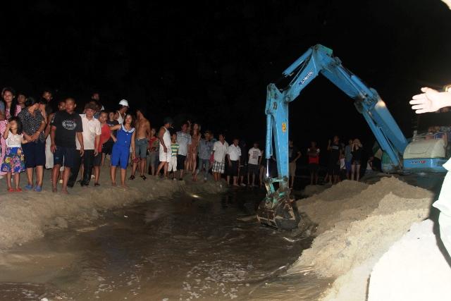 Thức trắng đêm giải cứu cá voi mắc cạn tại đảo Cô Tô 1