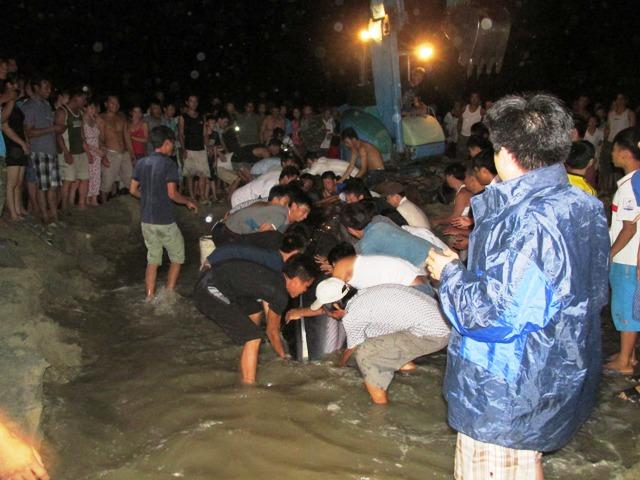 Thức trắng đêm giải cứu cá voi mắc cạn tại đảo Cô Tô 9