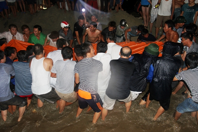 Thức trắng đêm giải cứu cá voi mắc cạn tại đảo Cô Tô 11