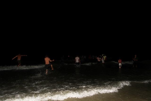 Thức trắng đêm giải cứu cá voi mắc cạn tại đảo Cô Tô 14
