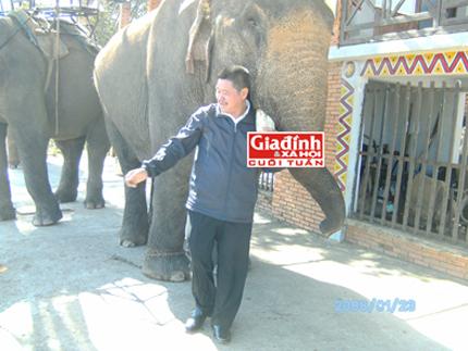 Kỳ nhân nguyện cả đời chăm sóc cho voi giữa đại ngàn: Cuộc chiến dành sự sống cho voi 1