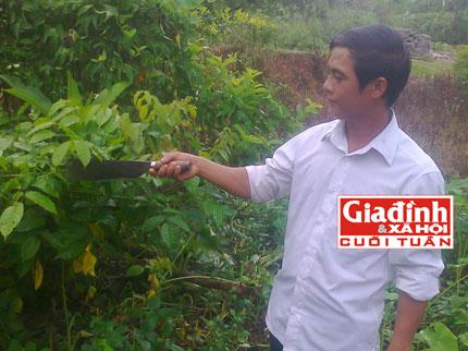 Gặp lương y sở hữu bài thuốc trị bệnh gan độc đáo ở Hà Giang 2