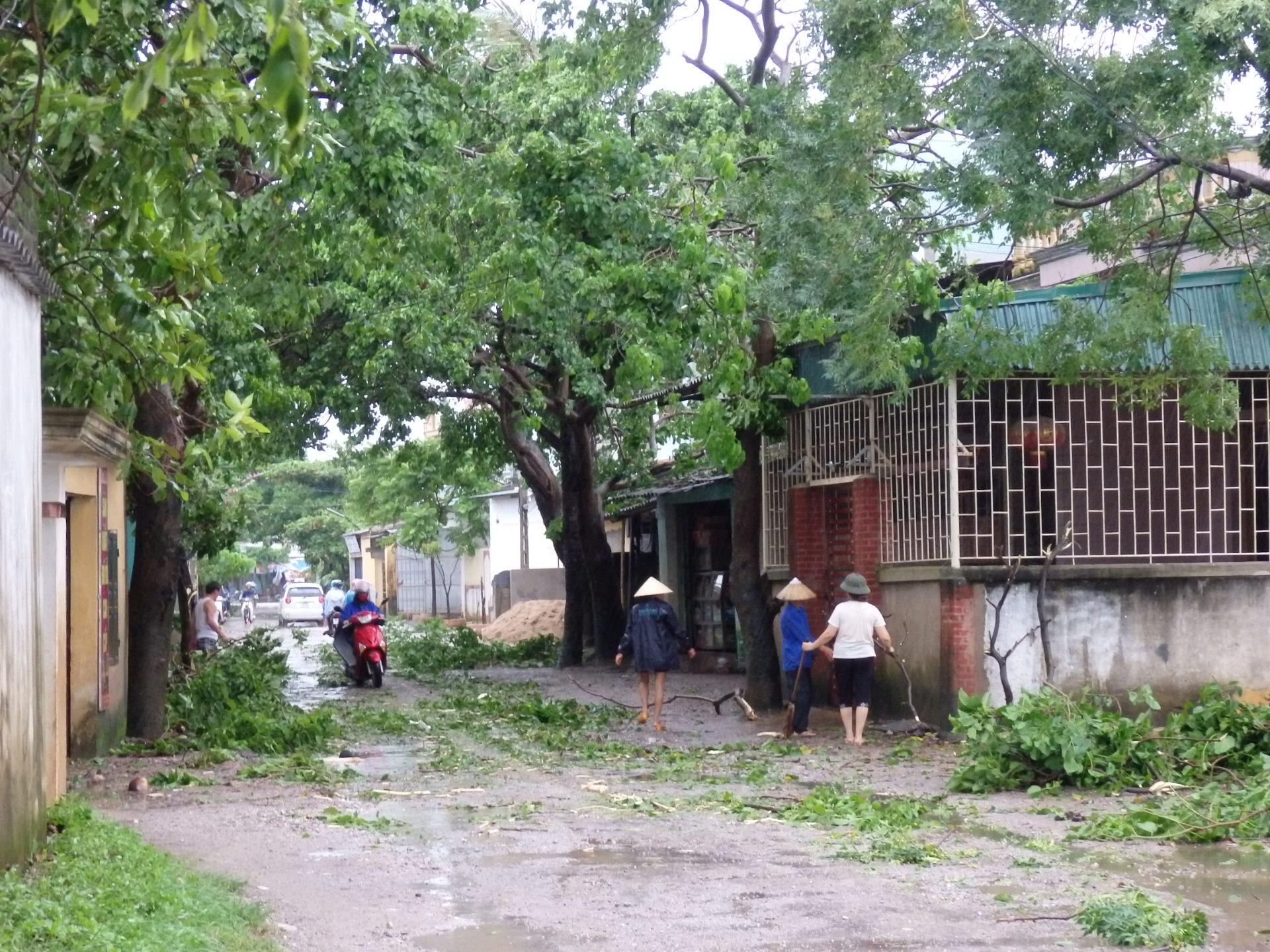 Thanh Hóa: Thiệt hại ban đầu do bão số 6 gây ra ước tính 167 tỷ đồng 4