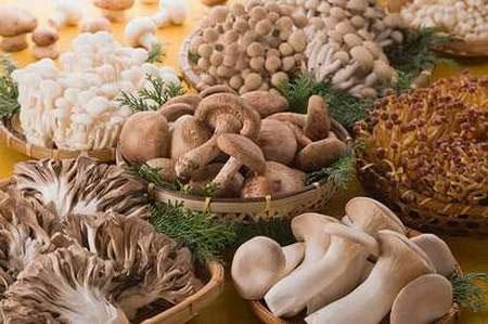 Cách ăn và chế biến nấm tốt cho sức khỏe 1