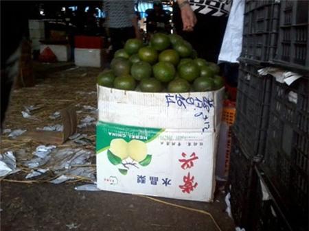 Trò bẩn hại nhau: Hàng Tàu đội lốt đặc sản Việt 3