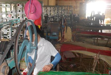 Nga Sơn, Thanh Hóa: Nhìn vào cói, đói quanh năm 1