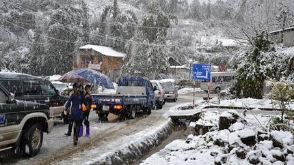 Tắc đường cục bộ ở Sa Pa vì dừng xe ngắm tuyết rơi 4