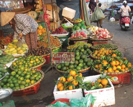 """Cam Trung Quốc """"đội lốt"""" hoa quả trong nước """"xâm chiếm"""" thị trường 2"""