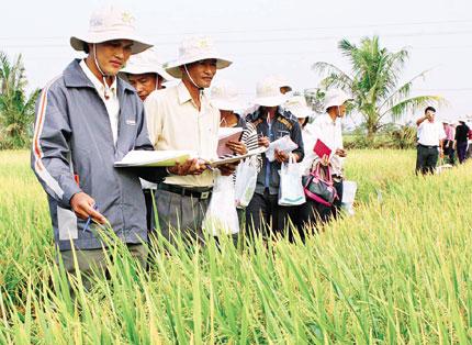 Báo cáo phát triển con người: Hướng tới sự phát triển bền vững 1