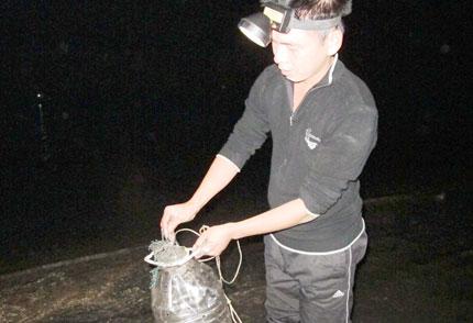 """Nghề độc """"săn"""" ruốc Quảng Ninh 2"""