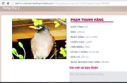 Vietnam's next top model: Những hình ảnh xấu xí và cẩu thả 1