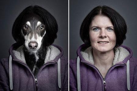 Chó trưng diện giống chủ nhân chụp ảnh chân dung 5