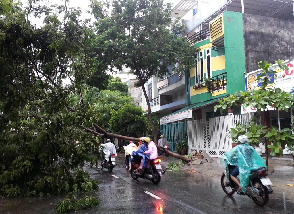 Cận cảnh người dân Đà Nẵng chuẩn bị đối phó bão số 8 24