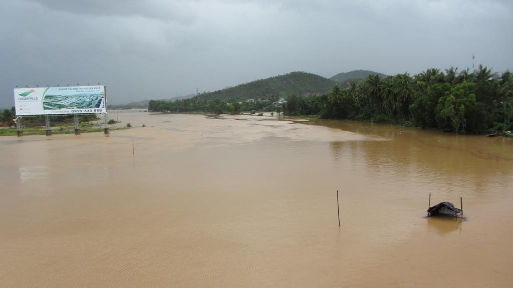 Cận cảnh người dân Đà Nẵng chuẩn bị đối phó bão số 8 21
