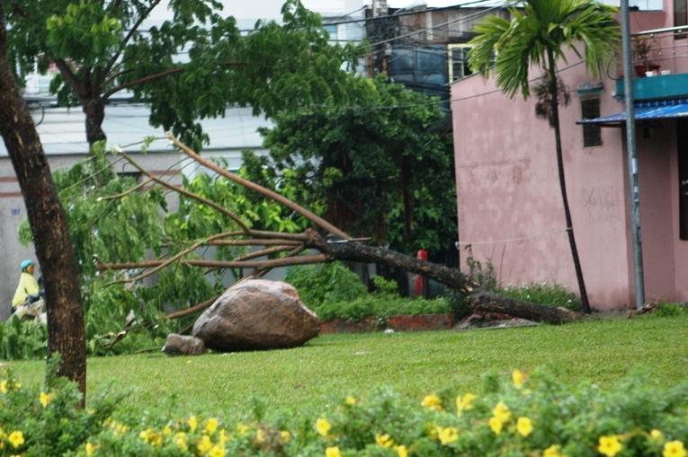 Cận cảnh người dân Đà Nẵng chuẩn bị đối phó bão số 8 23