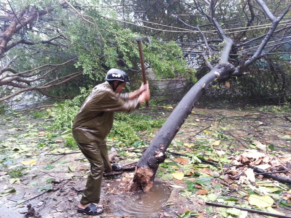 Đà Nẵng tan hoang sau bão số 11 9