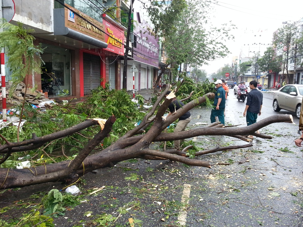 Đà Nẵng tan hoang sau bão số 11 10