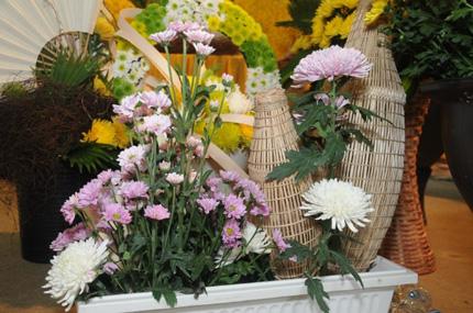 Lễ hội hoa cúc Ba Vàng – nét văn hóa cần được lưu giữ 7