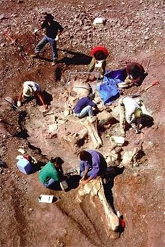 Điều đặc biệt, những vật tùy táng theo bộ xương này không phải đều thuộc nền văn hóa Ai Cập hoặc nền văn hóa nào đó trên Trái đất. Các nhà khảo cổ tìm thấy những chiếc đĩa bóng ghi những dòng chữ lạ, những bộ quần áo làm bằng kim loại, máy móc lạ, những viên đá khắc hình sao, hành tinh, đôi giày có chất liệu giống như nhựa.