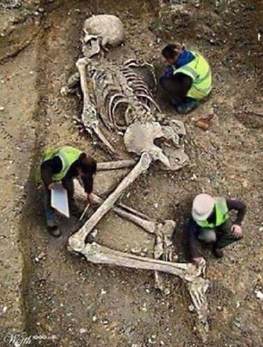 Không chỉ có thế, trước đó, một dân tộc ít người ở Thổ Nhĩ Kỳ đã tìm thấy trong một hang động một xác ướp bí ẩn, có từ kỷ nguyên băng hà, nằm gọn trong chiếc quách được làm từ đá pha lê. Xác ướp này có hình thù giống người, tuy không có kích thước khổng lồ như các bộ xương khác nhưng da có màu xanh sáng và có đôi cánh trong suốt lớn ở hai bên.