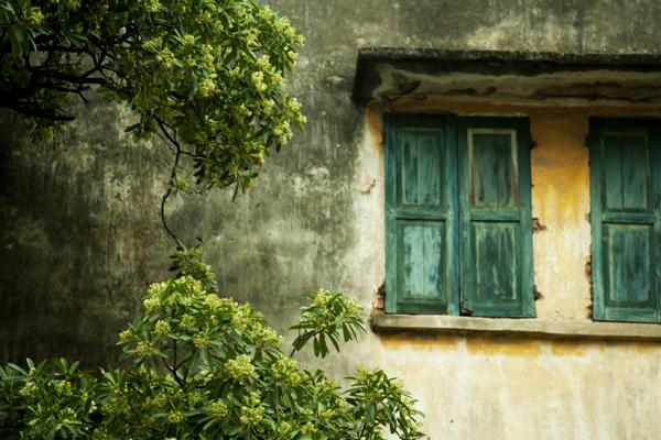Nhiều gia đình đành chọn biện pháp đóng kín mít các cửa sổ.