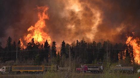 Đám cháy dữ dội lan ra hơn 2.600 ha. Nguồn: RT