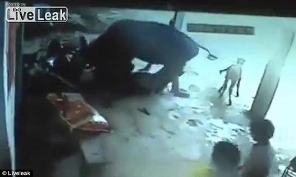 Con vật húc 2 người đàn ông xuống đất và làm đổ chiếc xe máy để những kẻ tấn công sợ hãi chạy khỏi hiện trường.