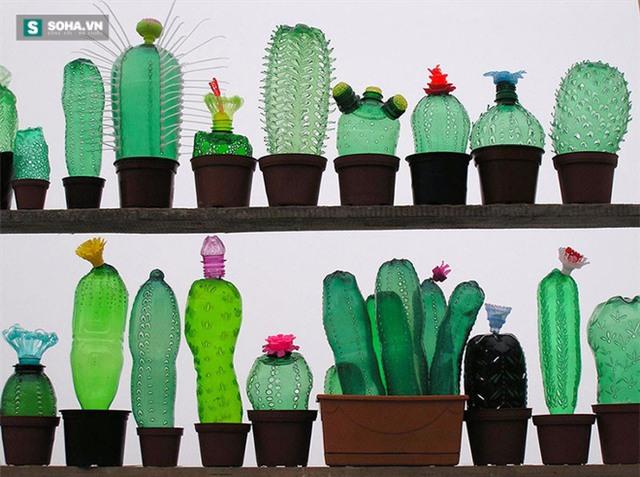 Có nhiều cách để tái sử dụng chai nhựa, không cứ phải dùng nó để đựng đồ uống (Ảnh minh họa)