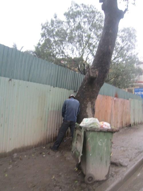 Người đàn ông này chỉ cần quay vào gốc cây bên đường là có thể giải quyết nỗi buồn (ảnh chụp tại đường Khuất Duy Tiến)