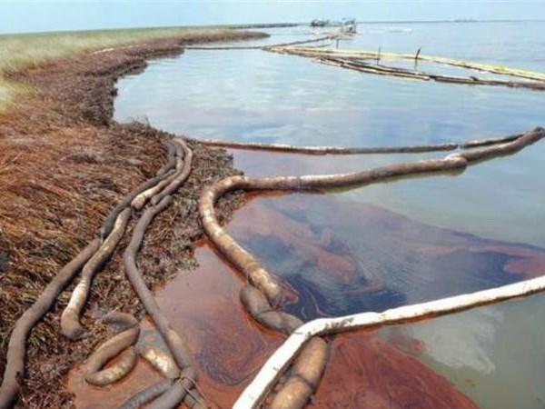 Sự cố tràn dầu. (Nguồn: aljazeera.com)