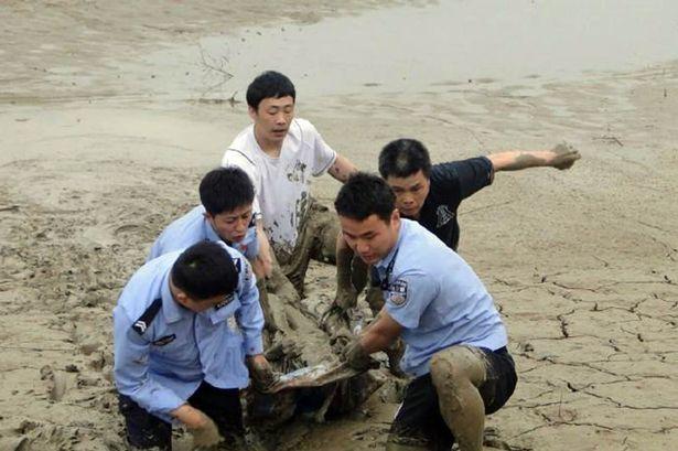 Lực lượng cảnh sát và người dân cố gắng đưa cụ ông lên bờ.