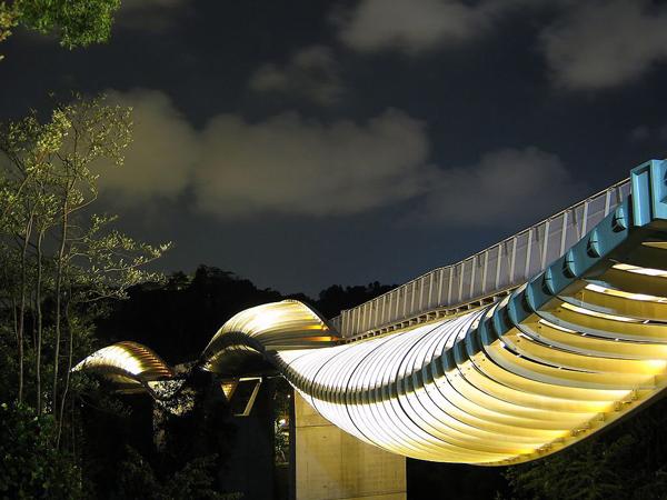 Cầu Henderson Wave nằm trên một con phố nhỏ và khá vắng vẻ có tên Telok Blangah, Singapore. Đây là một trong những cây cầu đi bộ lạ nhất thế giới với những xương xườn thép lượn cong từ trên xuống dưới tạo thành sóng bao phủ lấy thân cầu.
