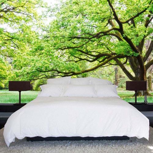 Chiếc giường như đang được bố trí giữa công viên cây xanh.