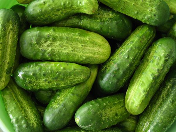 Những loại thực phẩm chứ nhiều nước là cần tây, rau diếp, dưa chuột, củ cải, cà chua…