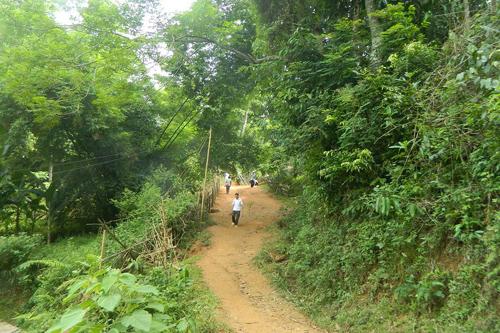 Con đường nhỏ dẫn vào nhà vợ chồng ông Dần.