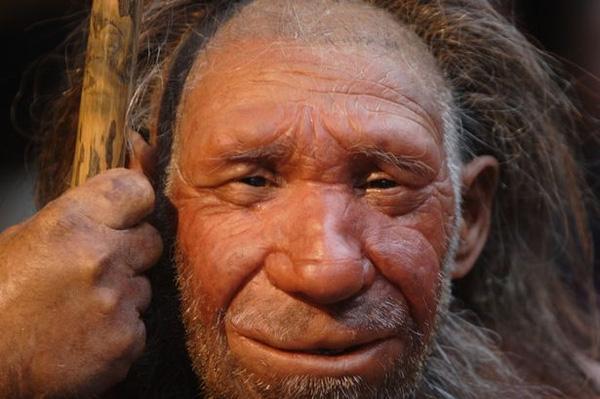 4% ADN của người châu Âu và châu Á hiện đại được cho là được thừa hưởng từ người Neanderthal.